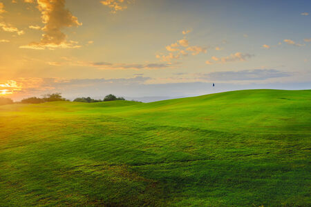 A tree on a beautiful golf course in the Philippines during sunrise Stock Photo