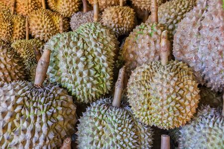 smelly: Spiky and smelly Philippines Durian for sale in a local market