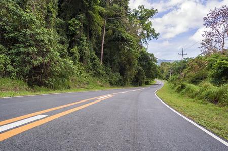 Winding asphalt road with markings beside forest
