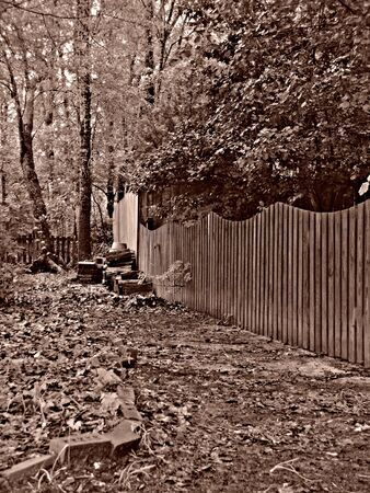 fence row and wood pile photo