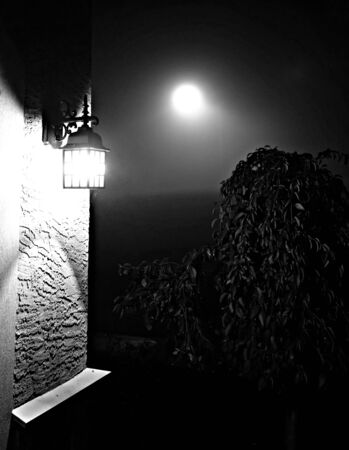 nite: Porch Light and the Moon