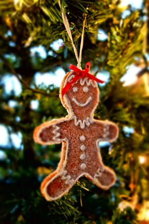 'yule tide': The Gingerbread  Man Stock Photo