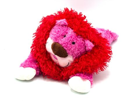 Lion doll on white background