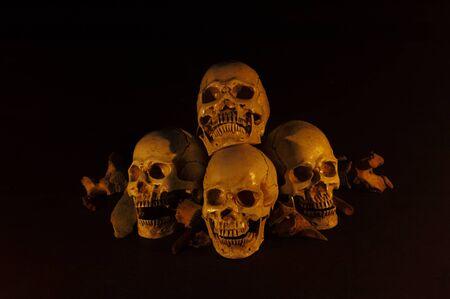 Pile of skulls put on dark floor and black background dim light