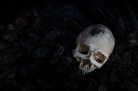 Skull and bones digged from pit in the scary graveyard  / Still life and art image Stock Photo - 133608983