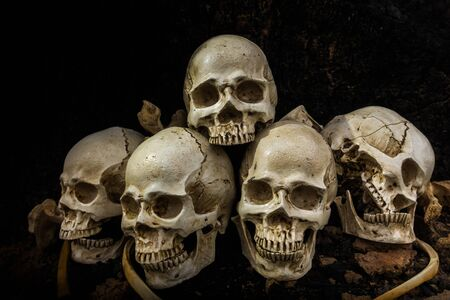 Still life image of Skull and bones in the pit or in the scary graveyard with treasure laid together in the pit.Scary and lonely while sundown or late evening. Concept of wealthy dead.