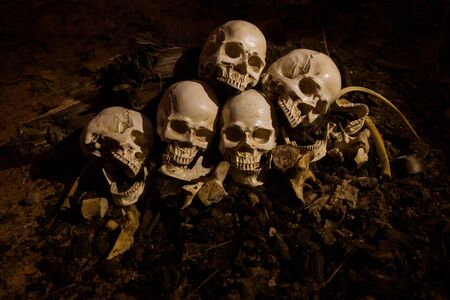 Still life image of Skull and bones in the pit or in the scary graveyard with treasure laid together in the pit.Scary and lonely while sundown or late evening. Concept of wealthy dead. Stock Photo - 133608995