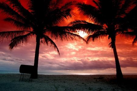 gradual: silueta de palmeras, tortugas de mar en la playa de la isla, fue fotografiado por agregar un filtro gradual...