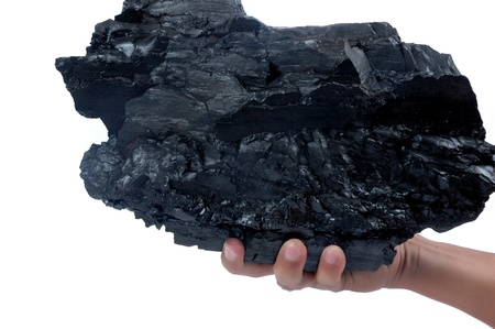 male hand holding a big lump of coal isolated on white background photo