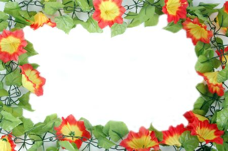 beautiful flowers frame isolated on white background Stock Photo - 11324990