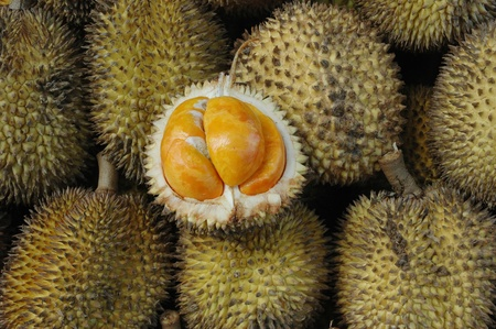 Elai, tropical fruits like durian fruit, with smaller size and yellow tropical fruit that is found only in Borneo Indonesia Stock Photo
