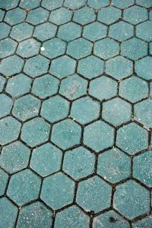 apiculture: honeycomb pattern of the green paving blocks