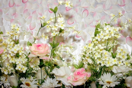 petals flower background Stock Photo