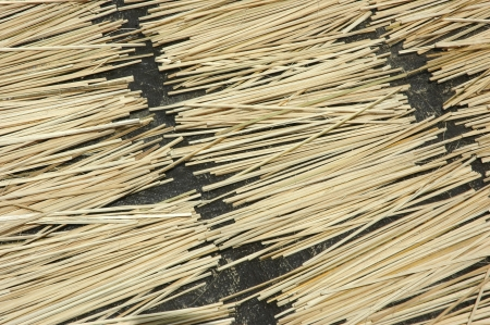 pieces of bamboo sticks photo