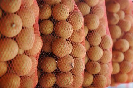 litchi: litchi fruit
