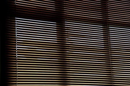 window blinds photo