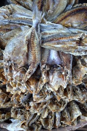bluefish: patterns of dried fish background       Stock Photo