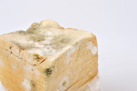 stale: stale white bread on white background Stock Photo