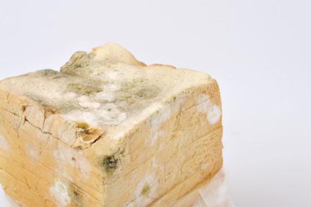 fungal disease: stale white bread on white background Stock Photo