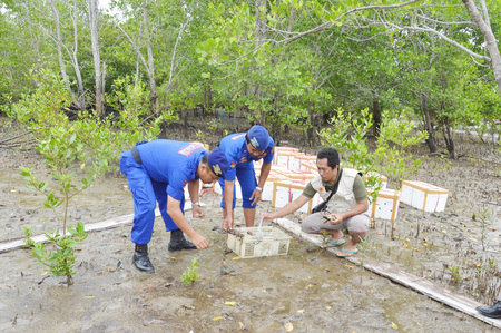 smuggling: TARAKAN, INDONESIA - MARCH, 27, 2016 : Tarakan City Marine Police release about a thousand mangrove crabs that do not meet the size standards were brought into  Tawau City, Malaysia Editorial