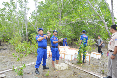 box size: TARAKAN, INDONESIA - MARCH, 27, 2016 : Tarakan City Marine Police release about a thousand mangrove crabs that do not meet the size standards were brought into  Tawau City, Malaysia Editorial