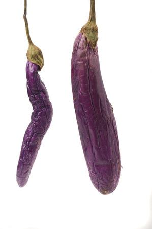 rotten eggplant isolated on white background Stock Photo