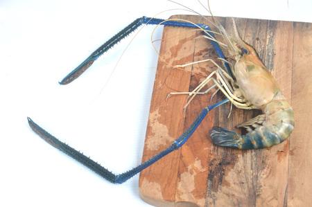 Giant river prawn (Macrobrachium rosenbergii) isolated on white Stock Photo - 124979325