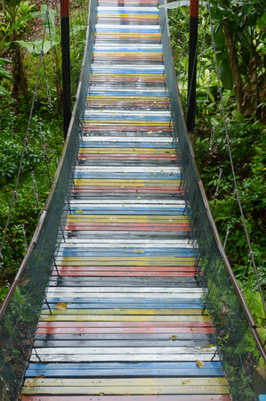 colorful hanging bridge on the jungle Editöryel
