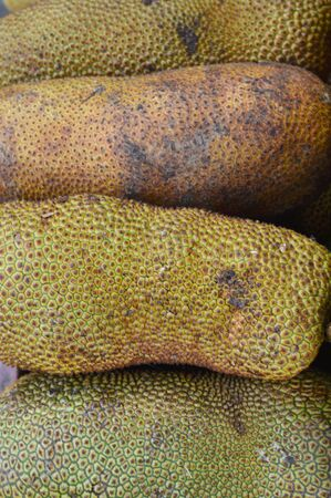 Cempedak is an excotic fruit found mostly in Indonesia and Malaysia. It's similar to jackfruit but a much more common jackfruit.