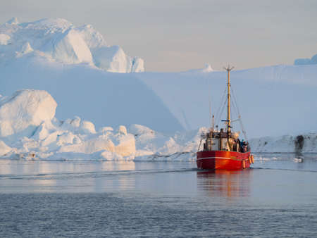 A red fishing boat motors through tranquil sea surrounded by icebergs.Greenland.Arctic