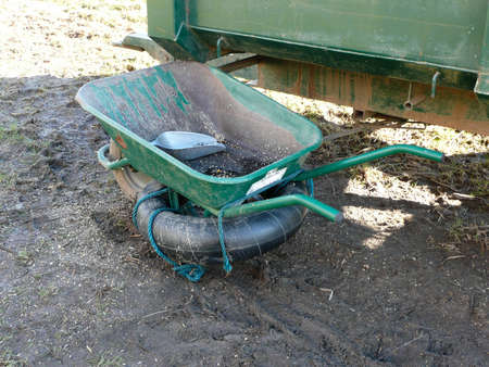A green wheel barrow used for carrying wild bird feed has a tyre tied to it to enable it to float. A silver feeding scoop is inside Reklamní fotografie