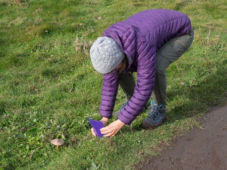A lady walker in hiking boots bends over to take a photograph of a Parasol mushroom with her smartphone