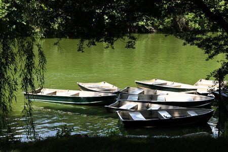 row boats moored on a lake