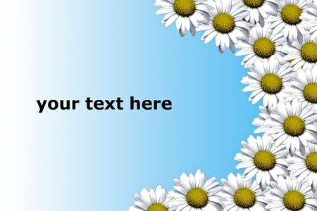 montage of daisy flowers with space for text