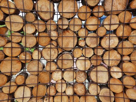 Chopped wood prepared for the winter heating season