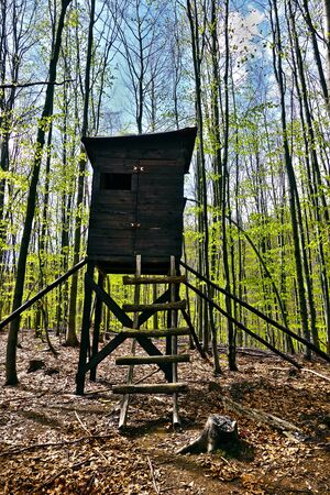 Hunting tower in the forest Archivio Fotografico - 131323857