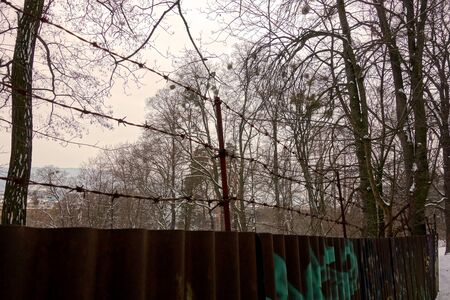 Sheet metal fence with barbed wire