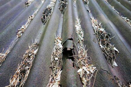An old sheet metal roof 版權商用圖片