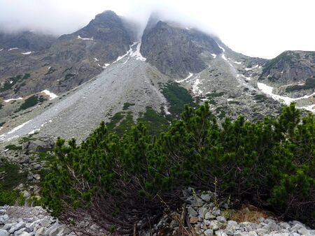 Great Cold Valley High Tatras