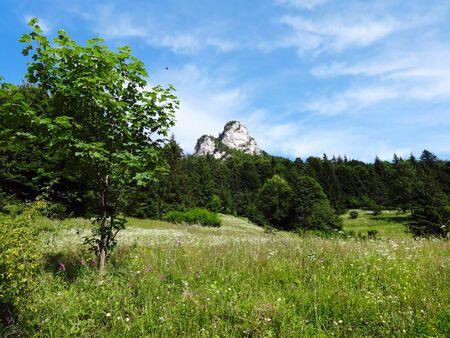 Nature, Krivan Little Fatra, Slovakia