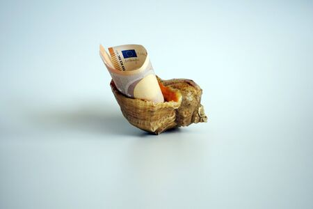 Paper money in a sea shell