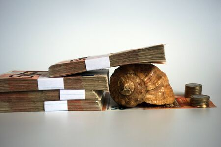 Money with conch imitates the sluggish pace of economy in the form of a slug 写真素材 - 137666143