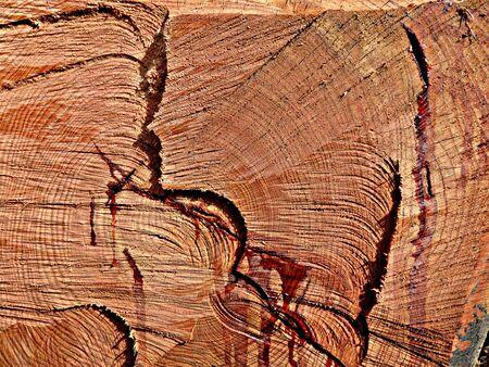 Wood, raw material