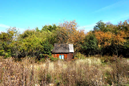 Old abandoned shack in overgrown grass in autumn season