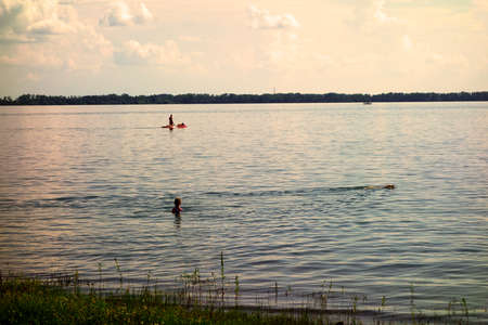 The girl watches as a dog swims in the lake during the children's holidays