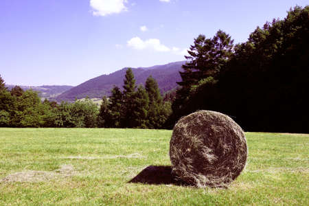 Straw roller on farmland in a mountain environment