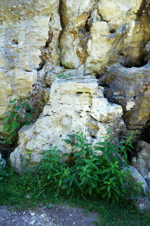 Travertine wall with hiking trail and geothermal holes in the rock, Dreveník Slovakia