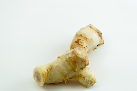 Galangal oil in isolated white background photo