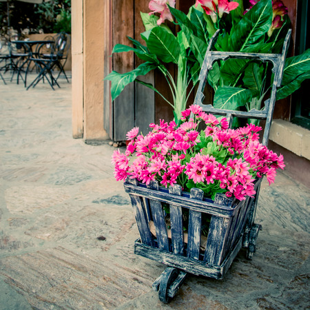 colorful flowers in the wheelbarrow photo
