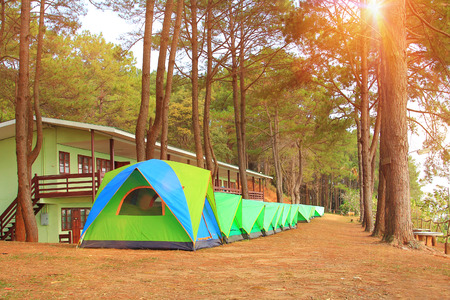 Khao Kho Phetchabun in thailand,morning in forest pine wiht travel adventure and camping on holiday